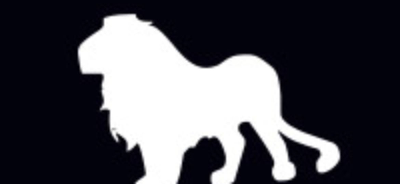 lion_pic2